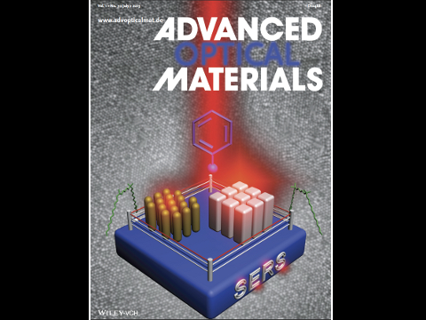 Advanced Optical Materials 2013