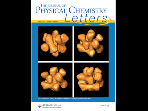 Journal of Physical Chemistry Letters 2014
